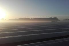 asperges-steken-bij-zonsopkomst 001