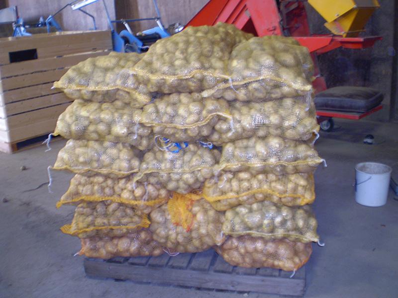 aardappels-in-zakken