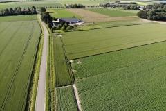 akkerbouwgewassen-rondom-boerderij