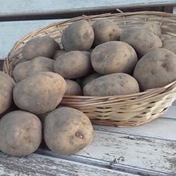 aardappelen van vael